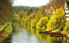 Picture autumn, water, trees, the city, river, home, boats, Germany, channel, Tübingen, Tübingen