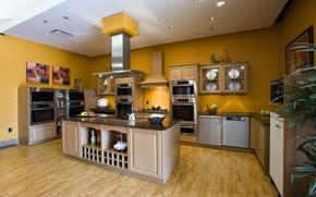 Picture interior, kitchen, dizan