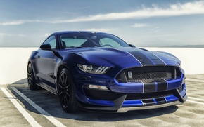 Picture mustang, ford, shelby, gt350