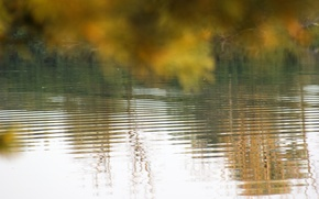 Picture wave, autumn, leaves, water, nature, reflection, background, Wallpaper, river