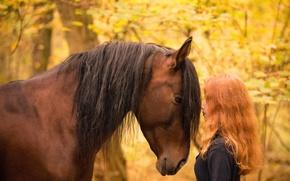 Wallpaper horse, girl, autumn