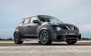 Picture Concept, Nissan, Nissan, juke, Juke-R, 2015, YF15