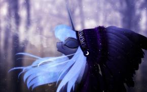 Picture winter, mlp, Luna