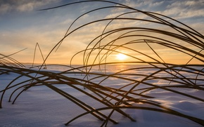 Picture the sky, snow, nature, In the Rush, Jeff Wallace, sunset