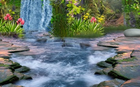 Picture flowers, stones, waterfall, plants