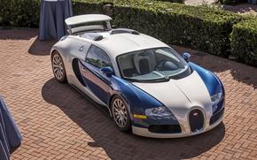 Picture veyron, bugatti, white, blue, chrome