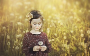 Picture spring, girl, dandelions