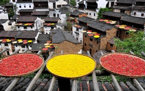 Picture roof, China, pepper, drying, chrysanthemum, dish, Jiangxi