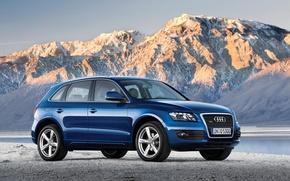 Wallpaper Audi, audi q5 car