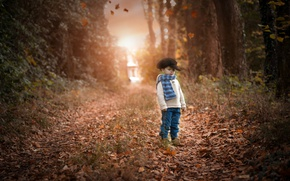 Wallpaper boy, autumn, road