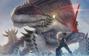 Picture weapons, monster, sword, art, lizard, battle, guy
