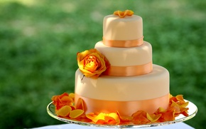 Picture flower, orange, yellow, rose, food, petals, large, tape, sweets, cake, dessert, ribbon, delicious