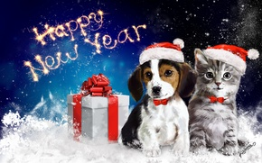 Picture animals, snow, gift, new year, cat, art, bow, dog, happy new year, packaging