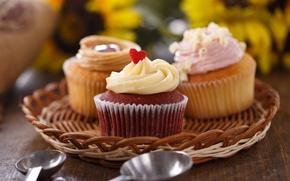 Picture cream, cakes, sweet, cupcakes