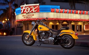Picture city., night, motorcycle, lights, color, American, Harley-Davidson, bright, yellow