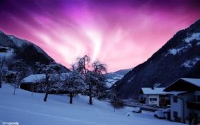 Picture night, Northern lights, Alaska, Aurora, cool, Northern Lights