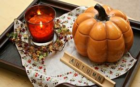 Picture photography, autumn, tray, pumpkin, decoration, candle, decor