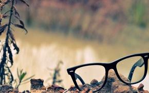 Picture grass, Rosa, glasses, pebbles, lenses