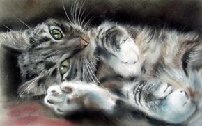 Wallpaper mustache, animal, look, painting, green eyes, muzzle, legs, ears, cat