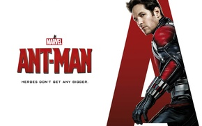 Picture fiction, costume, white background, poster, superhero, comic, MARVEL, Walt Disney Pictures, Ant-man, Paul Rudd, Paul …