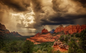 Picture the sky, clouds, light, rain, plants, Canyon, breed