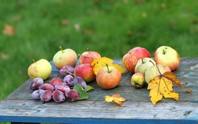 Picture Apple, Autumn, Garden, Autumn, plums, Fruit, Apple, Garden, Plums