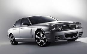 Picture Jaguar, Jaguar, silver