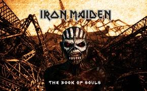 Picture skull, skeleton, dump, Heavy Metal, Iron Maiden, Book Of Souls