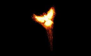 Picture fire, bird, minimalism, Phoenix, the rise, phoenix, myth, Fenya