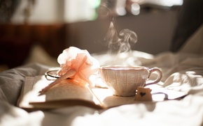 Picture smoke, Cup, book, Bed