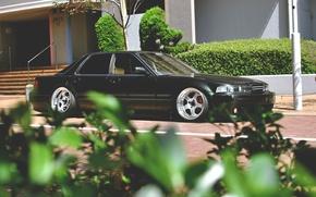 Picture leaves, honda, Honda, inspire