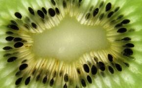 Picture fruit, Kiwi, Kiwi