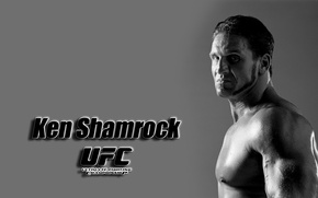 Picture background, widescreen, Wallpaper, wallpaper, fighter, widescreen, background, full screen, HD wallpapers, UFC, mixed martial arts, …