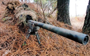 Wallpaper weapons, shelter, disguise, sniper, sight