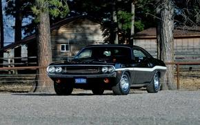 Picture Dodge, Challenger, Dodge, 1970, Challenger, Six Pack, JS23, R/T 440