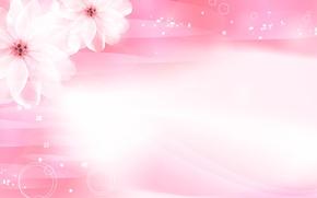 Picture flowers, pink, Sakura