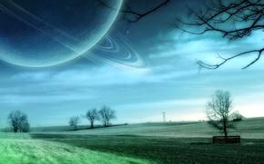 Wallpaper trees, space, field