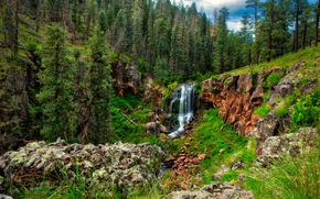 Picture forest, trees, waterfall, nature, mountains, the sky