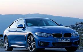 Picture BMW, Gran, Cut, 428i