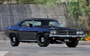 Wallpaper Dodge, Challenger, R/T, Hemi, 1971