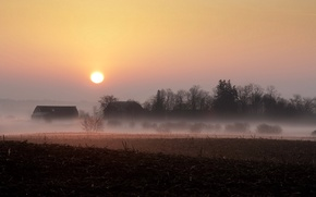 Picture field, landscape, sunset, fog, home