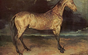 Picture the storm, grey, picture, mane, Horse, Louis, Jean, Theodore, Géricault