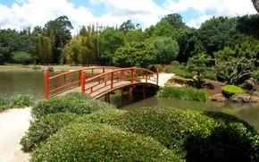 Wallpaper Park, bridge, Australia, Japenese Garden, Toowoomba, trees, pond