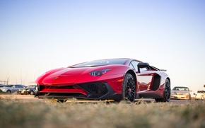 Picture Lamborghini, Aventador, 2015, 750-4