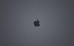 Picture apple, Apple, mac
