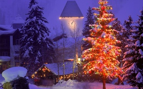 Wallpaper winter, snow, the city, tree, new year