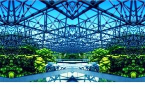 Picture bright, design, steel, vegetation, greenhouse