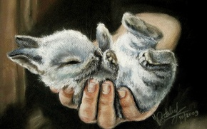 Picture people, hand, legs, small, painting, ears, rabbit