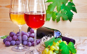 Picture bottle, leaves, bunches of grapes, The wine glasses