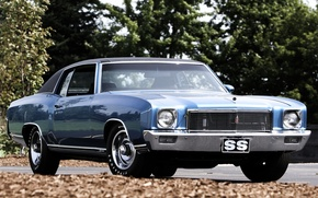 Picture blue, Chevrolet, Chevrolet, 1971, the front, 454, Muscle car, Muscle car, foliage.trees, Monte Carlo, Monte …